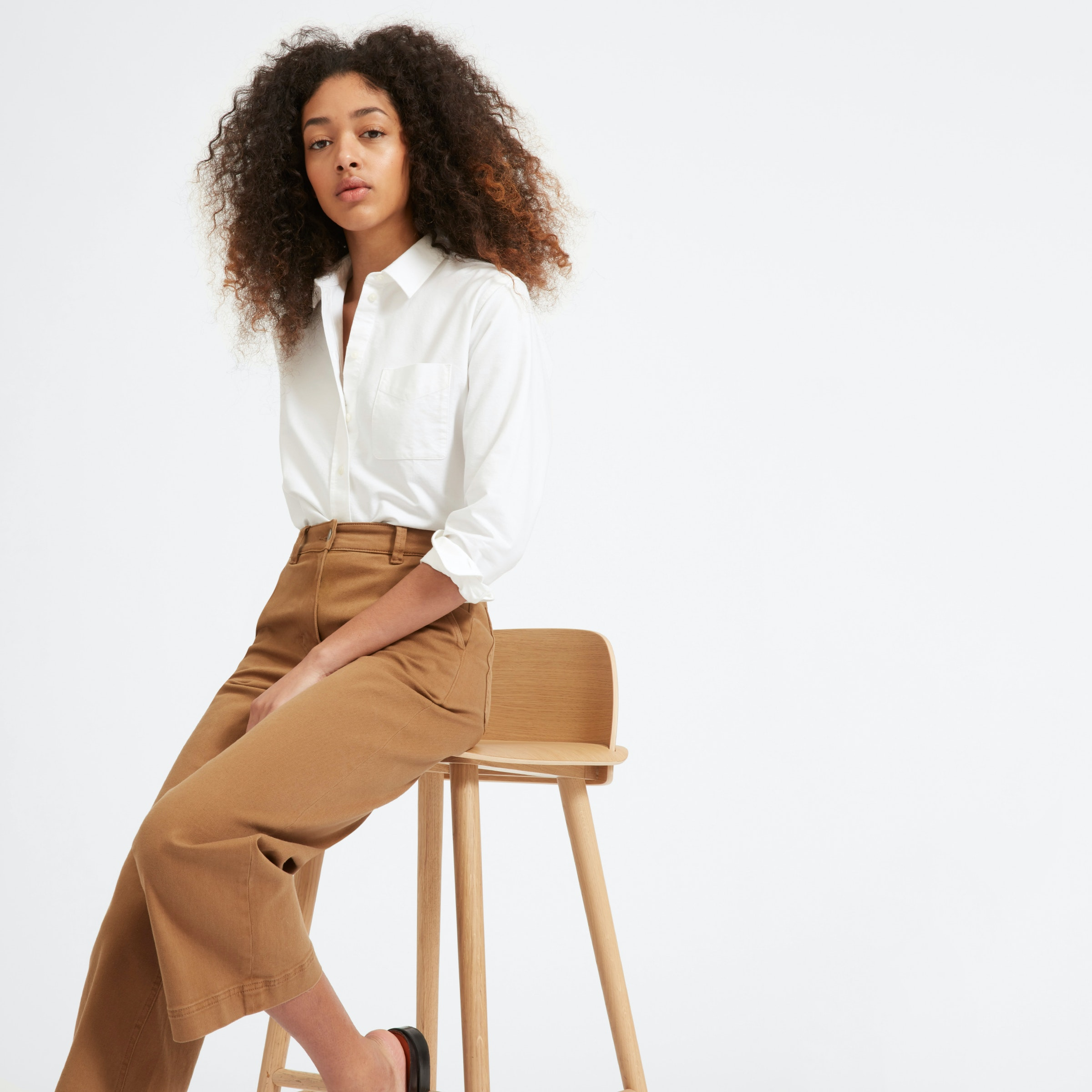 The Japanese Oxford Shirt by Everlane